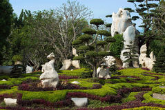 Jardim tropical natural muito bonito Fotografia de Stock
