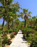 Jardim tropical No.3 fotografia de stock