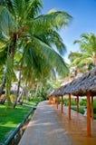 Jardim tropical no hotel imagem de stock