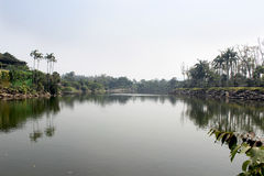 Jardim tropical Nong Nooch, lago Imagem de Stock Royalty Free
