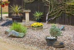 Jardim urbano do jardim ornamental com gramas e arbustos. fotografia de stock royalty free