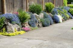 Jardim urbano plantado ao longo do passeio Fotografia de Stock