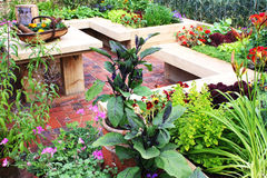 Jardim vegetal Fotos de Stock Royalty Free
