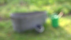 Jardim vegetal com cubeta plástica, banheira do potenciômetro molhando e a mangueira molhando, 4K video estoque
