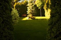 Jardim verde bonito e um banco Fotografia de Stock