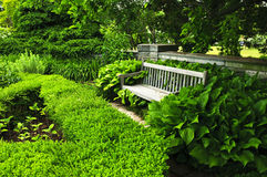 Jardim verde luxúria fotos de stock royalty free