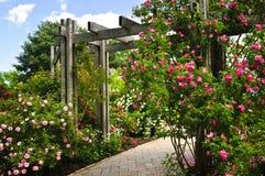 Jardim verde luxúria Imagens de Stock