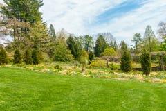 Jardim verde luxúria foto de stock royalty free