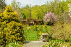 Jardim verde luxúria com lotes dos arbustos e das árvores Fotografia de Stock Royalty Free