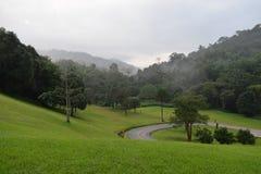 Jardim verde nas montanhas imagem de stock royalty free