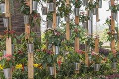 Jardim vertical Fotos de Stock