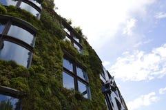 Jardim vertical em Paris com céu azul foto de stock