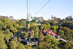 Jardim zoológico de San Diego fotografia de stock royalty free