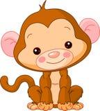Jardim zoológico do divertimento. Macaco Imagens de Stock
