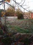 Jardin Photo stock