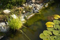 Jardin Image libre de droits