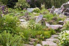 Jardin alpin avec des fleurs Images stock