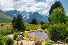 Jardin alpin, France Photos stock