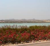 Jardin aménagé en parc, canal de mer, collines, station de vacances d'hôtel d'Anantara, Sir Baniyas Island Images stock