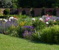 Jardin anglais de cottage avec la pelouse dans le premier plan, le lit de fleur luxuriant et le mur à l'arrière-plan avec l'espac images stock
