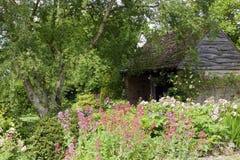 Jardin anglais de cottage en été Image stock