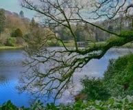 Jardin anglais de maison de campagne chez Stourhead Photographie stock