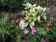 Jardin anglais de pays Photographie stock