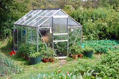 Jardin arrière Image libre de droits