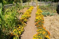 Jardin au musée de ferme de roche de bosse Image libre de droits