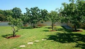 Jardin avec des arbres Images stock