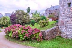 Jardin avec des fleurs image stock
