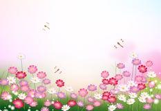 Jardin avec des fleurs et des libellules Image libre de droits