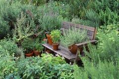 Jardin avec des herbes photographie stock libre de droits