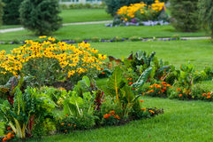 Jardin avec des légumes et des fleurs Photos libres de droits