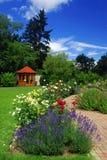 Jardin avec des roses Photographie stock libre de droits