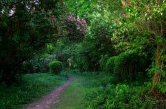 Jardin avec du charme de ressort photographie stock