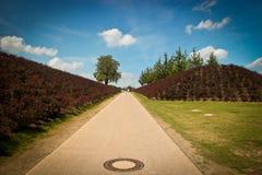 Jardin avec le ciel bleu Images libres de droits
