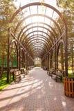 Jardin avec le paysage topiaire et la voûte Aménagement en stationnement photographie stock