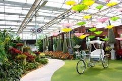 Jardin avec le vélo Image stock