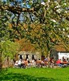 Jardin bavarois de bière au printemps Photos stock