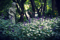 Jardin botanico卡洛斯Thays 免版税库存照片