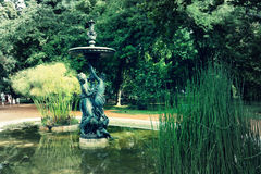 Jardin botanico卡洛斯Thays 库存图片