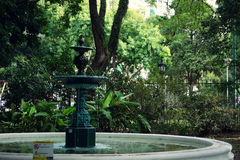 Jardin botanico Carlos Thays Royaltyfri Fotografi