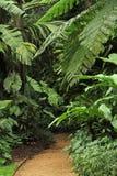 Jardin botanique Photo libre de droits