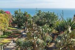 Jardin botanique Image stock
