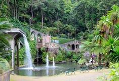 Jardin botanique Photo stock