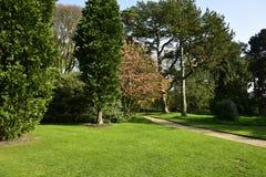 Jardin botanique Images stock
