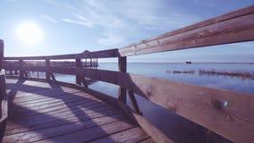 Jardin botanique côtier de Porto Caleri, dans la lagune italienne clips vidéos