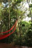 Jardin botanique d'Inhotim Photo stock