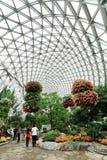 Jardin botanique de Changhaï de shan de Chen Image libre de droits